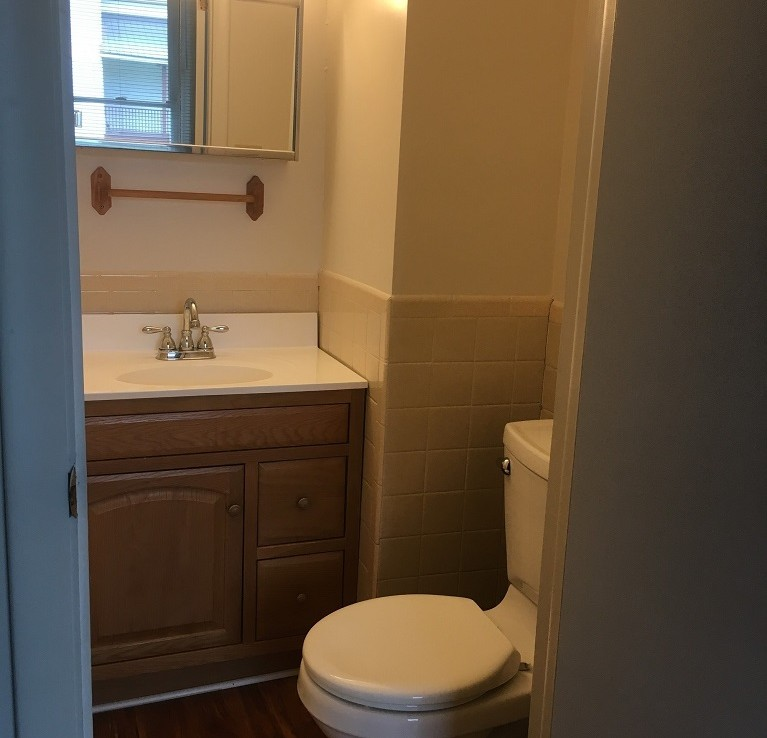 Student Apartments for Rent in Cortland 26 Groton Ave Apt B Bathroom