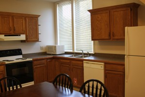 Apartments for rent in Cortland Near SUNY Cortland Campus 81 Tompkins St Apt C Kitchen